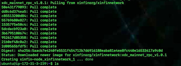 xinfin-bootstrap-masternode-image-pulling-output
